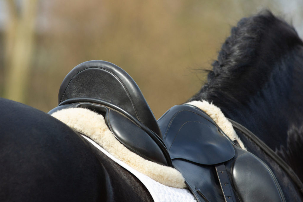 How long does a saddle fitting take?